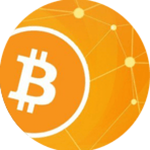 What is the meaning of bit coin?